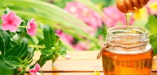 Как выглядит настоящий мед?