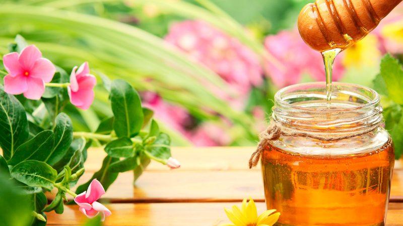 Как выглядит настоящий мед