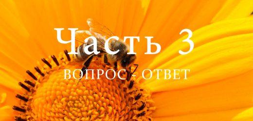 Корма пчел, часть 3