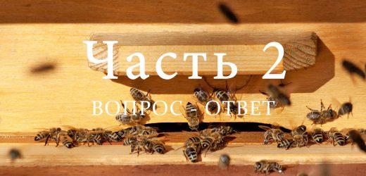 Подготовка пчел к зимовке, часть 2