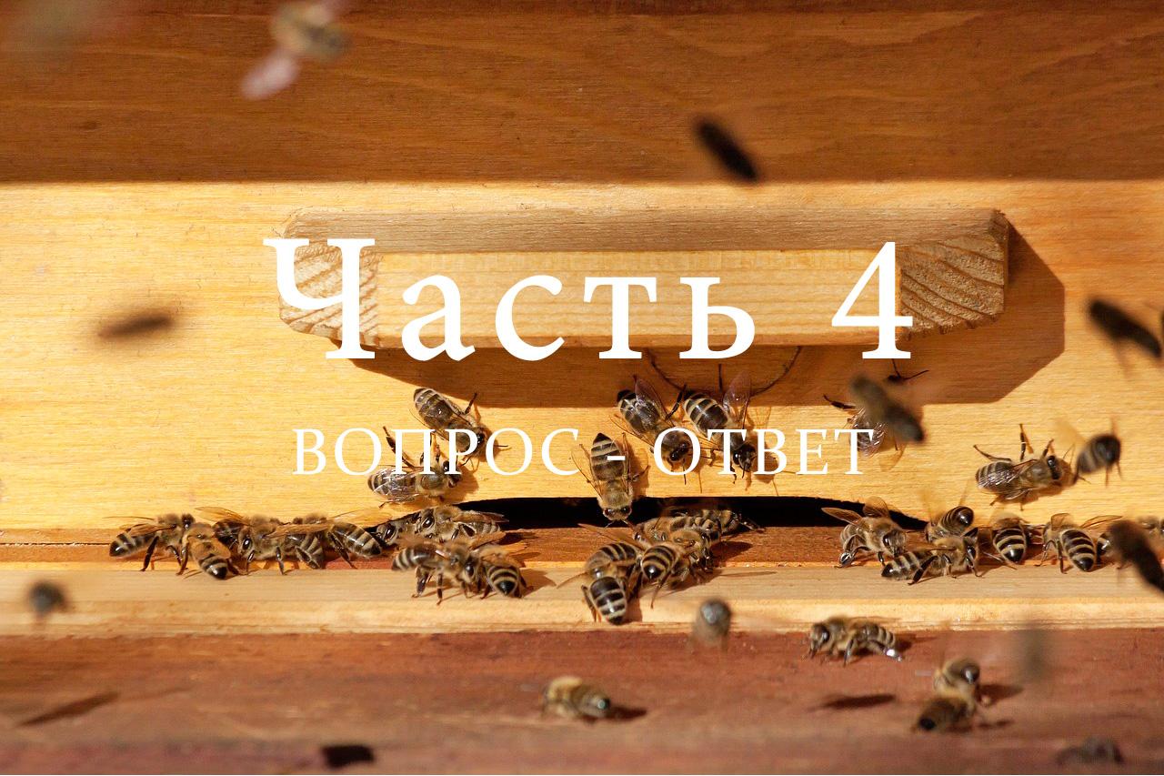 Подготовка пчел к зимовке, часть 4