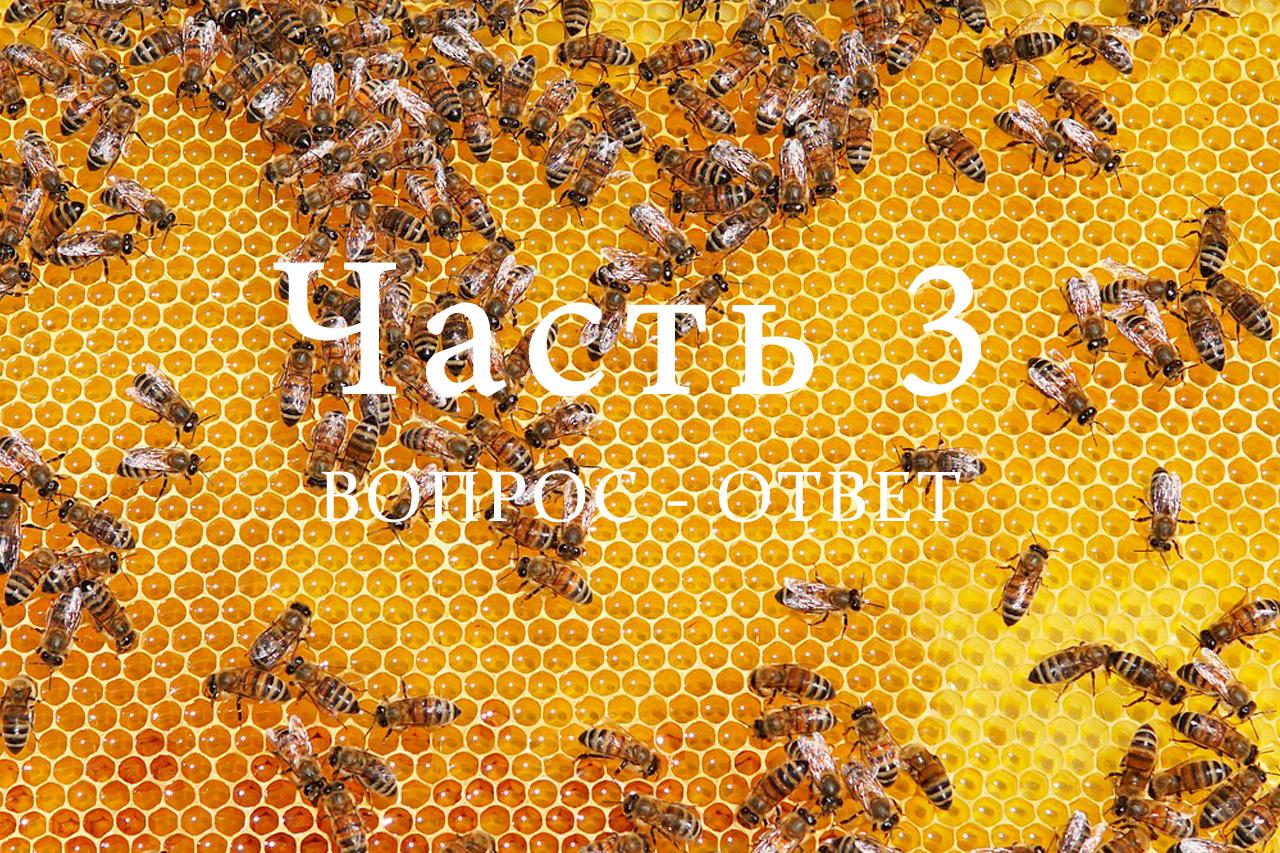 Продукция пчеловодства, часть 3