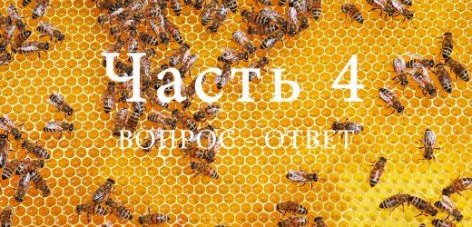 Продукция пчеловодства, часть 4