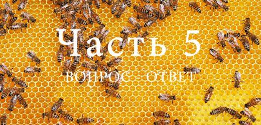 Продукция пчеловодства, часть 5