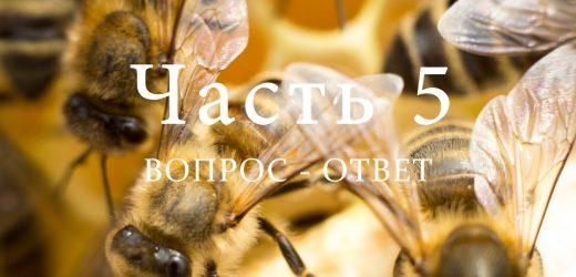 Разведение пчел, часть 5