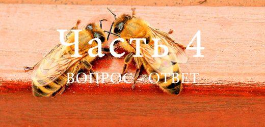 Всё о пчёлах, часть 4